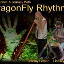 Dragon Fly Rhythms