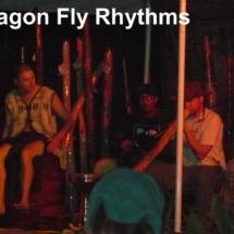 dragon fly rhythms 11-08
