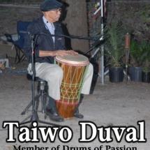 taiwo duval 2008